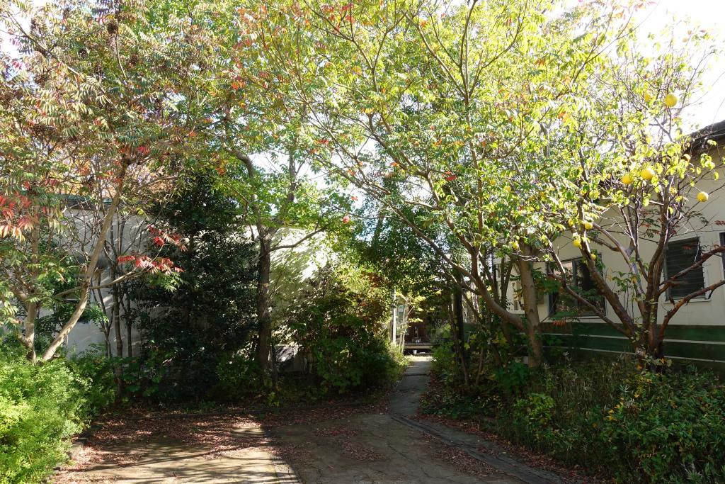 池田の森ベーカリーカフェの駐車場