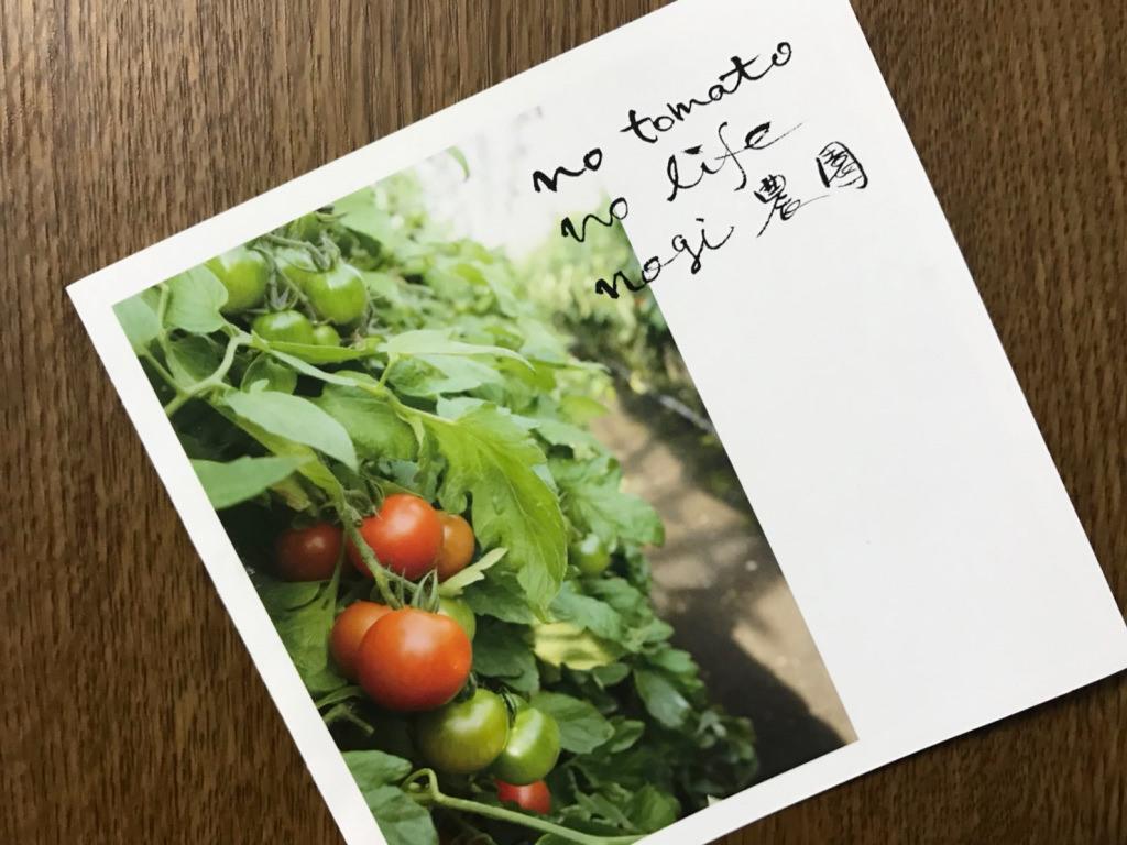 Nogi農園のショップカード